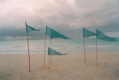 Blue banner flags flapping in the wind on a desolate beach