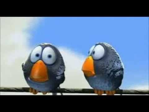 corto pajaros pixar - YouTube