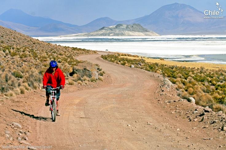 The Surire Salt Flat in Atacama Desert <3