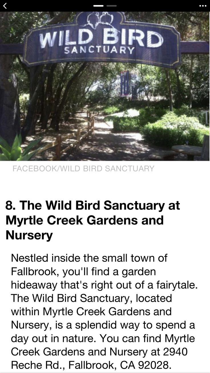 79a695ee3d6d1feab4ff1a20e3cbd10b - Myrtle Creek Botanical Gardens & Nursery Fallbrook Ca