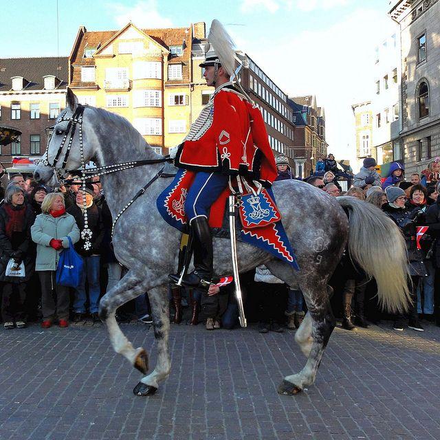 Danish Guard Hussar