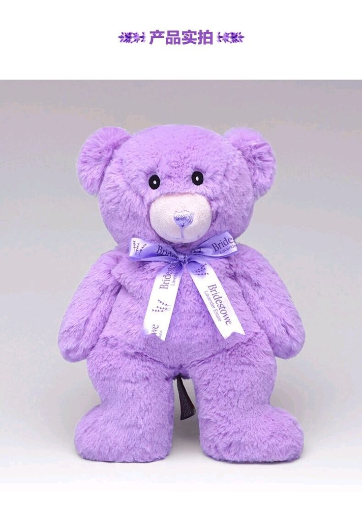 40.00$  Buy here  - Wholesale Teddy Bear plush toy doll Australia Lavender Girl doll pillow gift Multifunction free shipping