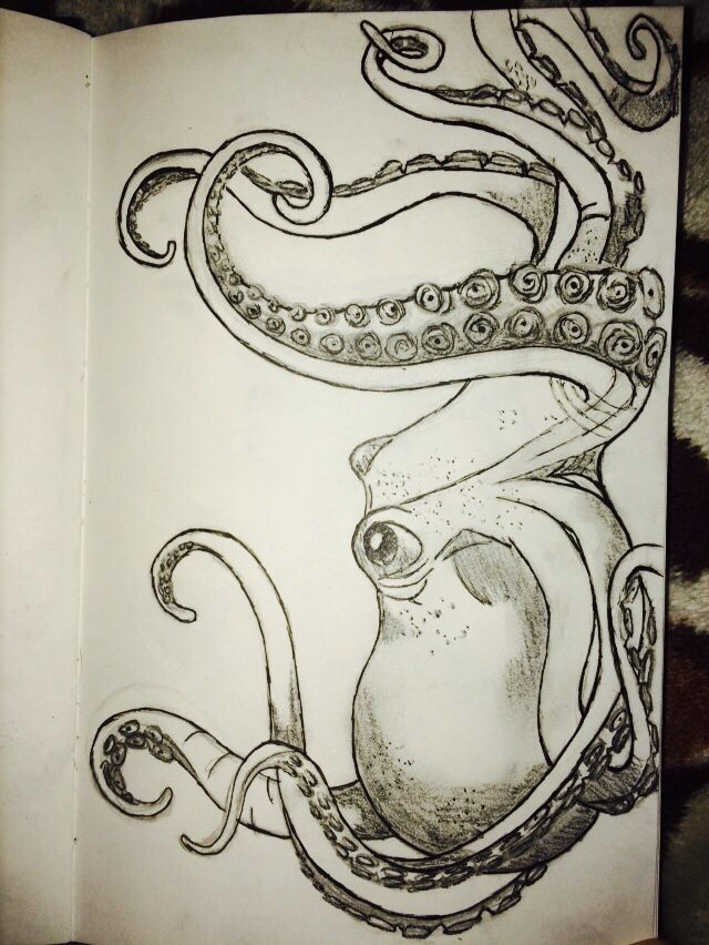 my octopus drawing