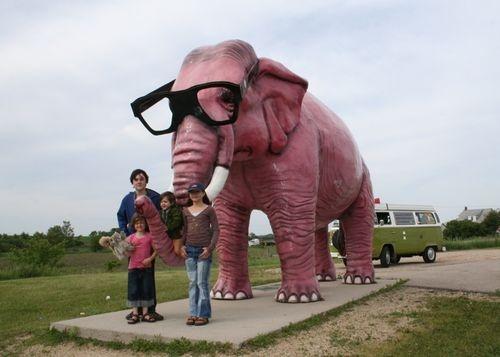 Jackson Mississippi elephant at the Jackson Zoo