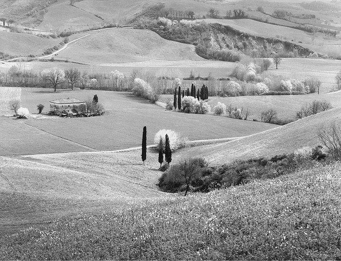 Toscana Farmlands