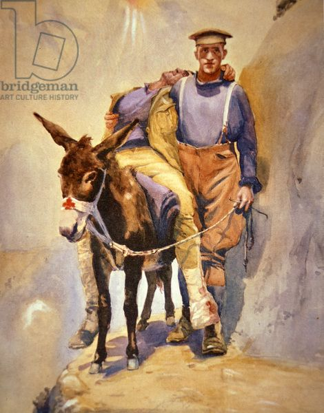 John Simpson Kirkpatrick of the 3rd Australian Field Ambulance who with his donkey rescued wounded soldiers at Gallipoli in 1915, 1915-16 (colour litho)