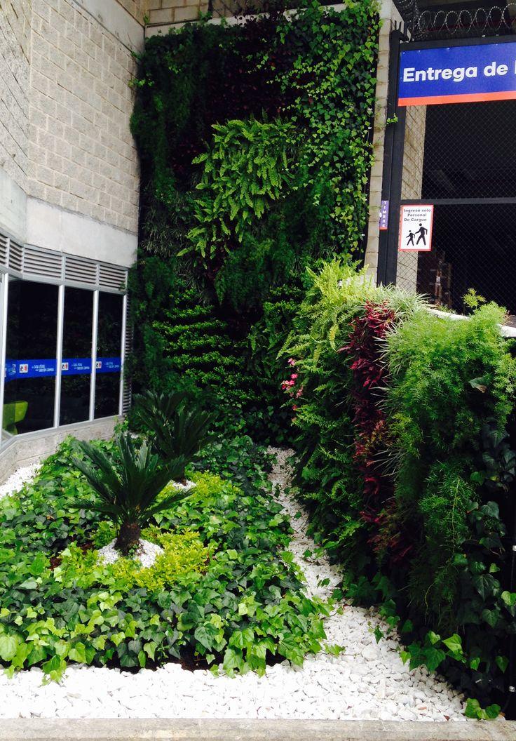 Exterior living wall, Homecenter C80, Bogota Colombia