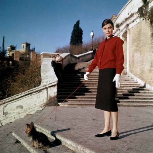 """The actress Audrey Hepburn photographed with Mr. Famous (her Yorkshire Terrier) at the Spanish Steps (in Italian: """"Scalinata della Trinità dei Monti"""") in Rome (Italy), in April 1958.Audrey was wearing:Jacket: Bergdorf Goodman (of red wool with a hood lined with white wool, buttons of white resin, liner of white rayon, of the collection for the Autumn/Winter 1956/57).Polo shirt: Givenchy Boutique Paris (of a black knitted fabric with silk yarns, of the collection for the Spring/Summer of…"""