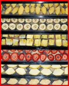 Great recipes and instructions for dehydrating no sugar added fruits, full meals for camping, and how to make your own fruit barks.