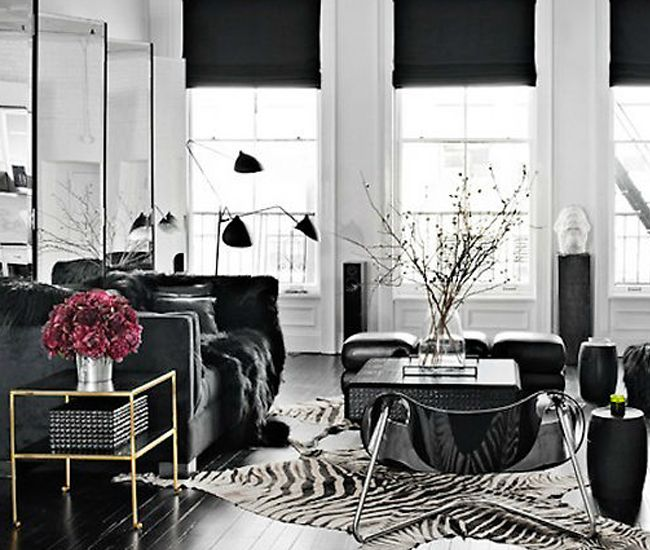 Zebra Rug Interior Design: Best 25+ Zebra Living Room Ideas On Pinterest