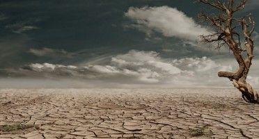 Cambiamento climatico, come rallentarlo?