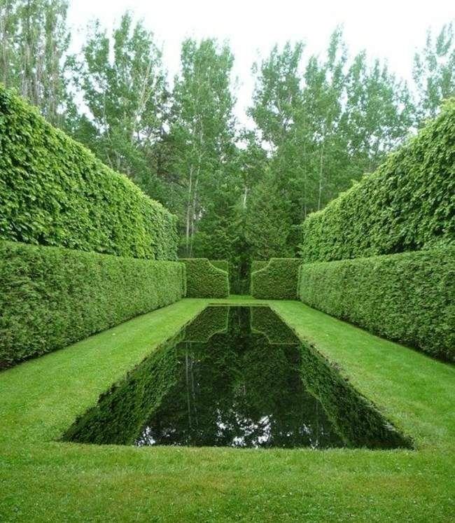une belle piscine dans le jardin vert