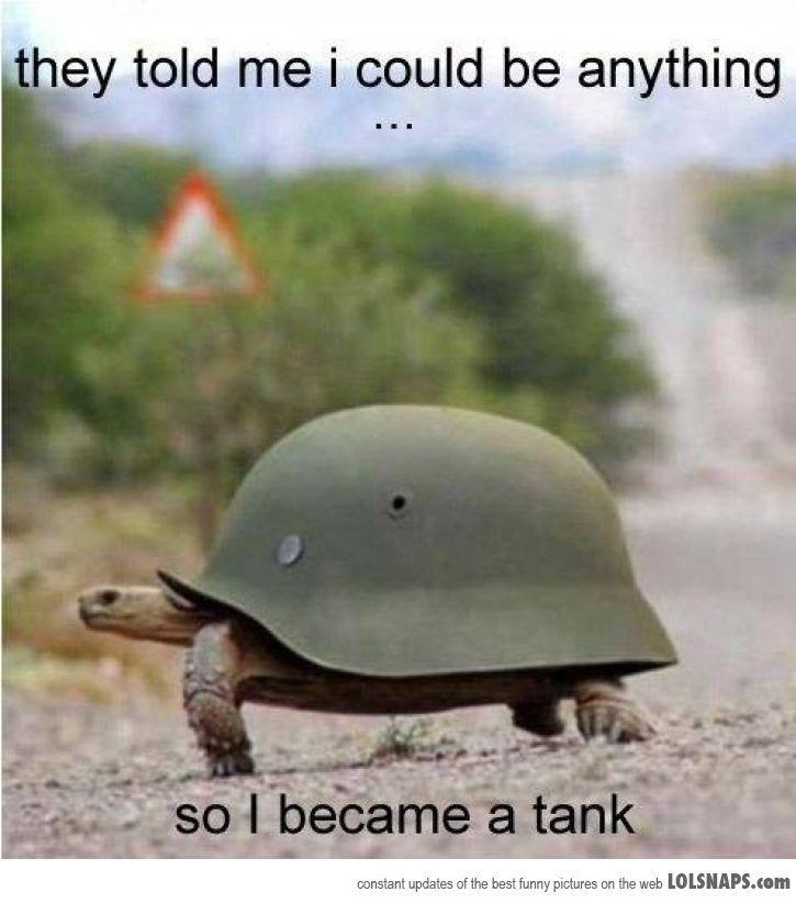 I <3 turtles!!