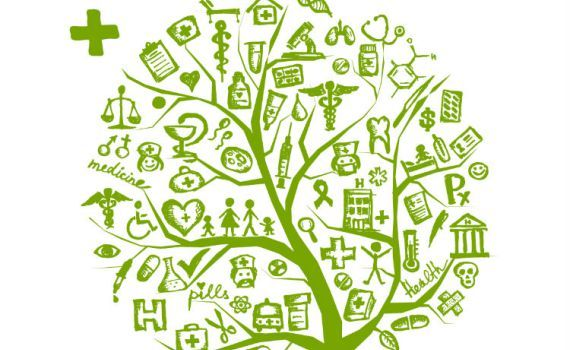 green economy, promozione misure di green economy