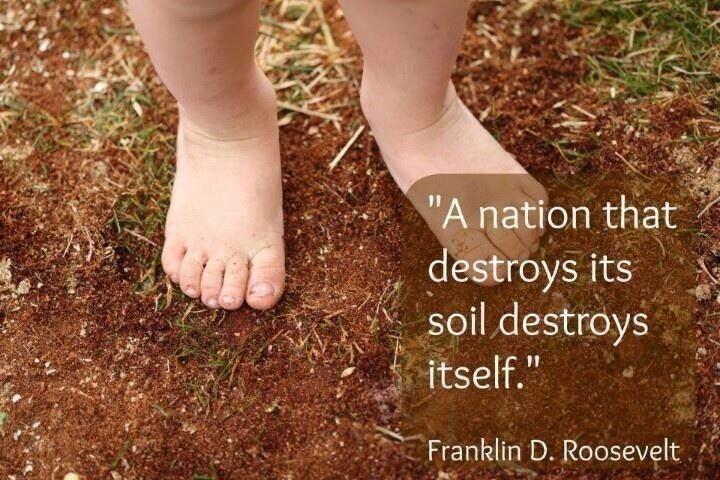 Our soil is our land's soul. Plant, eat, and support organic practices. As in humans, chemicals, and unsustainable practices destroy it.