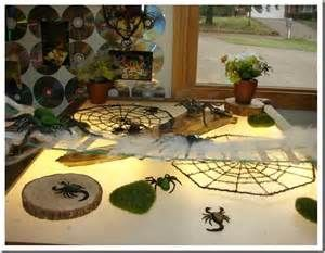 spider provocation preschool - Bing Images
