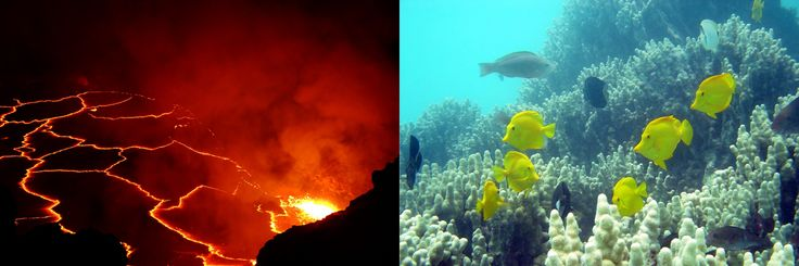 awesome Nasa News - NASA Invites Media Behind the Scenes of Volcano, Coral Reef Research - #Space #News