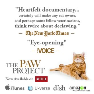 Ban Declawing of Cats | Cats are suffering tragically here in the United States of America because of Declawing. Once a cat is declawed it can become crippled, limp, lame, and so much more evils done to it. It's like taking a cigar cutter to the tip of your finger. The tools the vets use to declaw these cats actually cut part of the bone and bone fragments of the paw. Click for details and please SIGN and share petition. Thanks. (Click f/trailer for movie & for petition.)