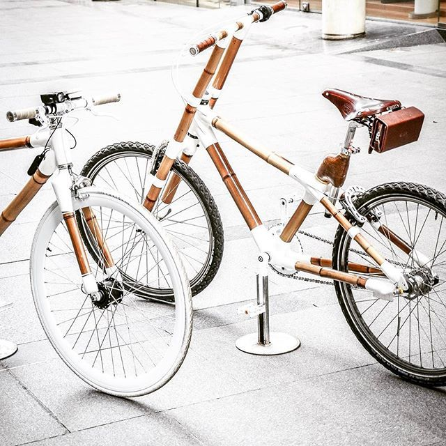 It's more than bike it's art - 🚲 Ready for news collabs in LA 🇺🇸 www.bamboobike-paris.com   Models: Ghost & Yin  #artist #brand #venicebeach #model #photographer #bike #bicycle #art #streetartist #hollywood #santamonica #style #lifestye #bamboobike #bamboo #design #luxury #collaboration #artistic  #creation #beverllyhills #photoshoot #losangeles #doinla #losangeles_city #losangeles_la #dtl #frenchtouch #instabike #photooftheday