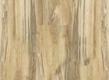 11 best fronts doors images on pinterest craftsman front for Donar oak flooring
