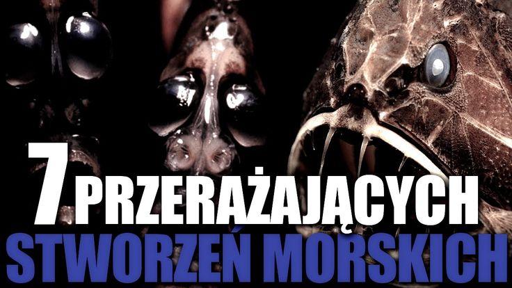 7 przerażających stworzeń morskich!