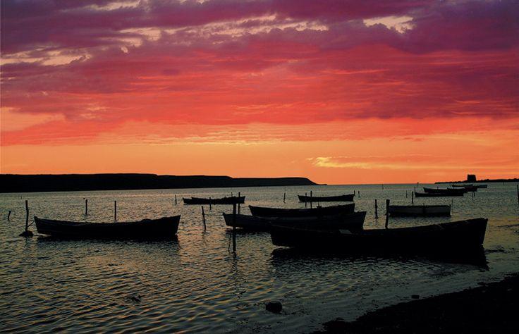 Laguna di Marceddì: barche dei pescatori alla rada di Piero Putzu