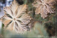 DIY Christmas Snowflake Tutorial - by Tifani Lyn -- http://tifanilyn.com/2012/11/let-it-snow-diy-snowflake-tutorial-make-something-lovely/