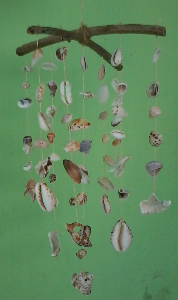shell  and coral mobile hanging picture