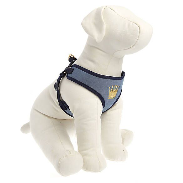 Top Paw Crown Comfort Puppy Harness Dog Harnesses Petsmart