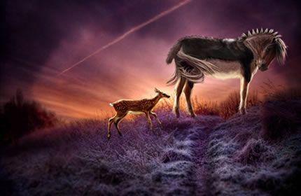 野生の馬、鹿、動物、荒野、日没、草原、光、美しい空 壁紙