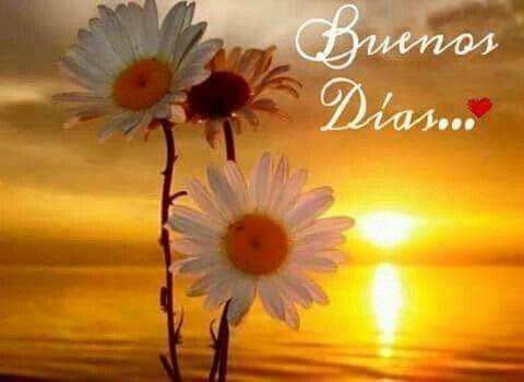 Buenos Dias http://enviarpostales.net/imagenes/buenos-dias-1234/ Saludos de Buenos Días Mensaje Positivo Buenos Días Para Ti Buenos Dias