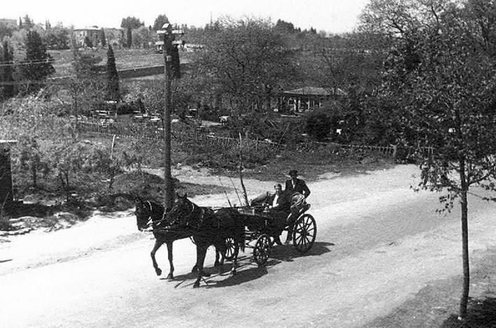 1930'lu yıllarda Mecidiyeköy dutlukları