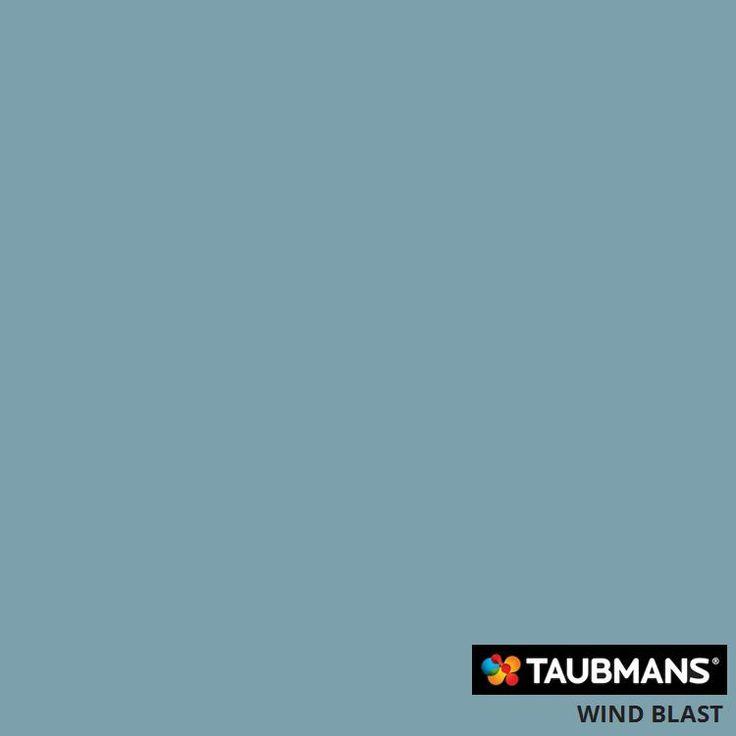 #Taubmanscolour #windblast