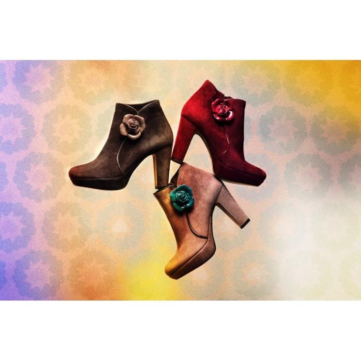 Colecciones, To Be Zapatos para Mujer Joven, Coleccion Zapatos Diseño, Moda Casual, Moda Elegante.