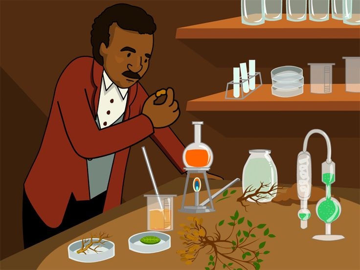George Washington Carver, a K-3 science resource page with lesson plans and teaching tips,, resource page with lesson plans and teaching tips, teaches kids about this scientist's ideas about crop rotation and his contributions to agriculture.