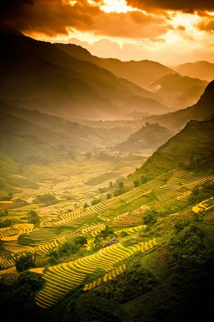 """A Land of Wonder"" Vietnam Rice Fields. Photography by Dan Ballard, via Flickr"