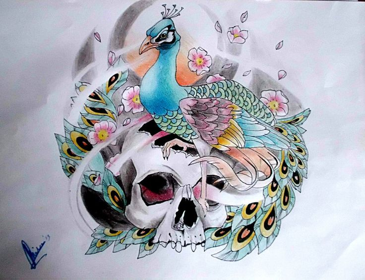 Peacock Sugar Skull: 25+ Best Ideas About Watercolor Peacock Tattoo On
