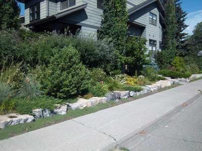 corner lot landscaping tips privacy