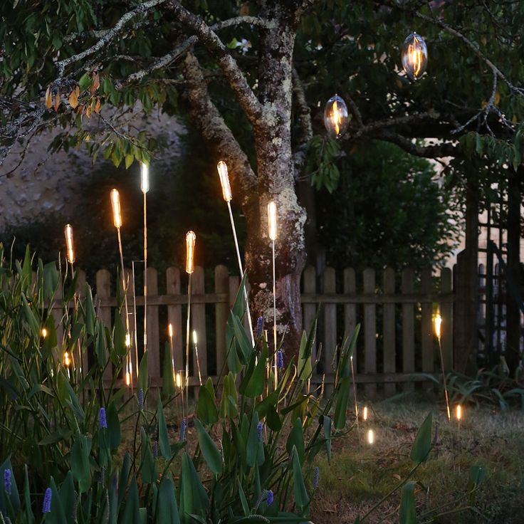 Outdoor Lighting Ideas And Options: 17 Best Outdoor Lighting Ideas Images On Pinterest