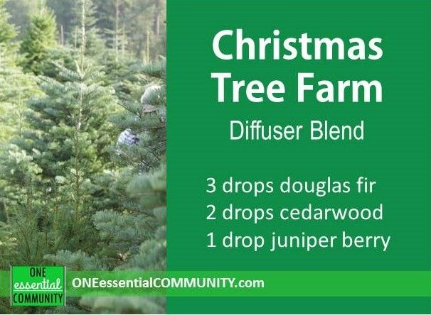 Christmas Tree Farm diffuser blend PLUS 40 more Christmas essential oil diffuser recipes