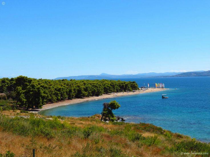 Gregolimano resort for water sport activities