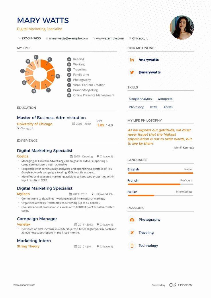 Entry Level Digital Marketing Resume Best Of Digital