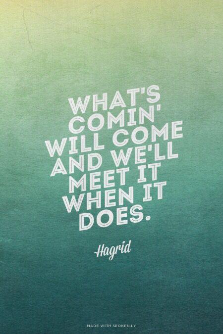 Hagrid quotes tho