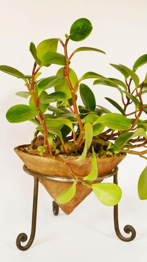 Clay Planter Terracotta Cone Planter Cast Iron by GlinkaDesign
