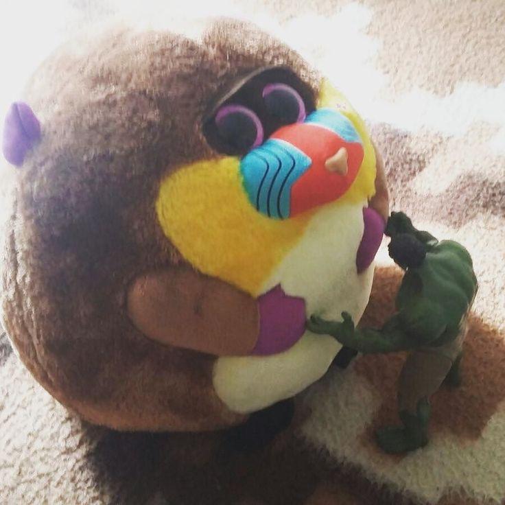Presenciando una dura #pelea entre #Hulk y Súper Bolita! #peluches #pelucheando #fight #softtoys #plush #instatoys #beanieballz #BeanieBoos #ty #mono #monkey #mandril #mandrill