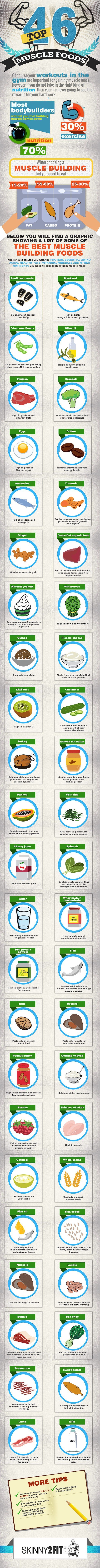 Muscle and Strength Gain: 46 Top Foods [by Skinny2Fit -- via #tipsographic]. More at tipsographic.com