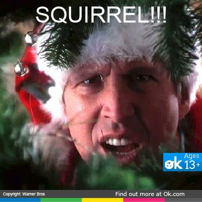 Chevy Chase rocks it every year with Christmas Vacation. What ages would you say this #movie is appropriate for?