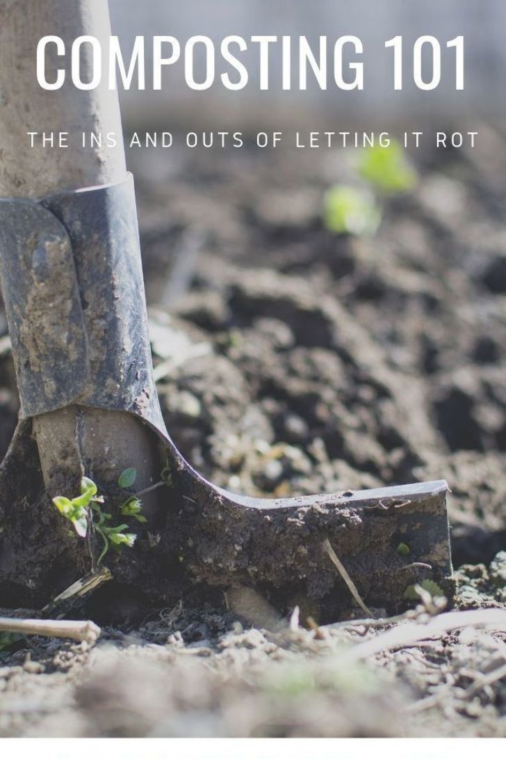 79b159c86812628ab28632887eb386df - Let It Rot The Gardener's Guide To Composting