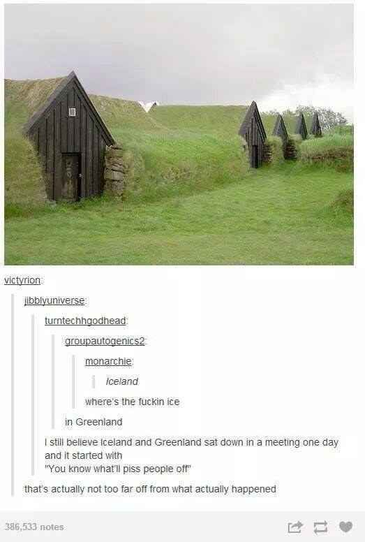 I think I remember learning that Vikings did it to confuse pirates or convince people to move to 'Green'land