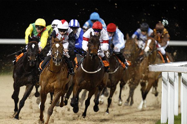 A night at Chelmsford City Racecourse - soon to be open in 2015 - just down the road and been waiting years for this :-)